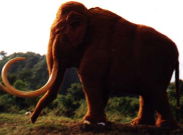 Big Red, the mammoth