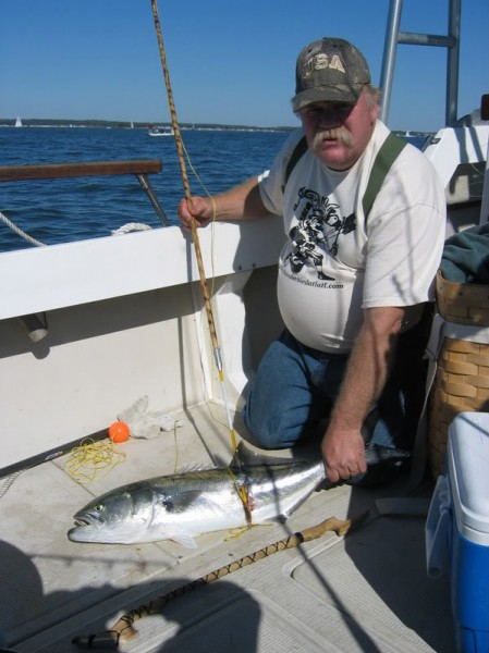 Bob Berg with a blue fish caught with a Wyalusing atlatl and a Thunderbird Atlatl harpoon. Bob was fishing in Long Island sound off the Connecticut coast with Gary Nolf and Scott Van Arsdale.